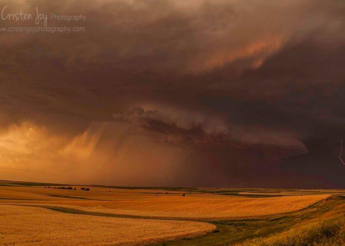 Wheat Fields & Storms {July Heat}