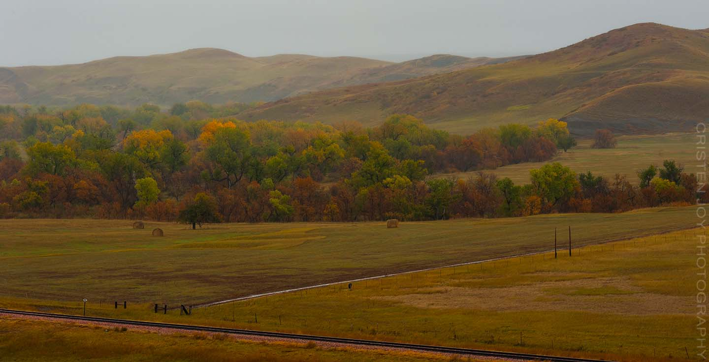 Searching for Fall on the Prairie