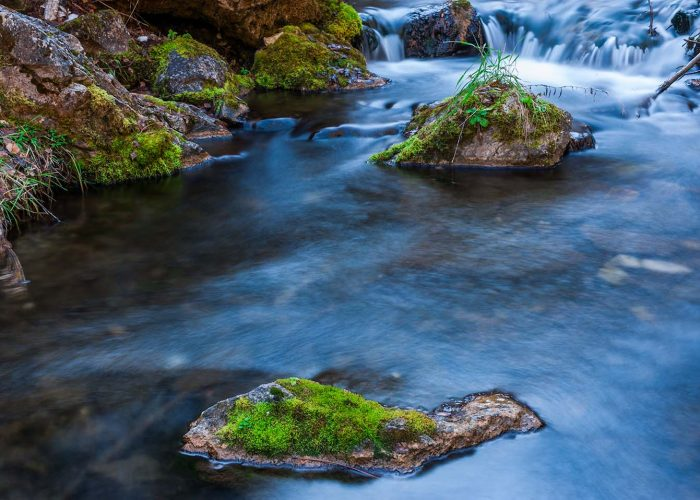 Color in Spearfish Canyon