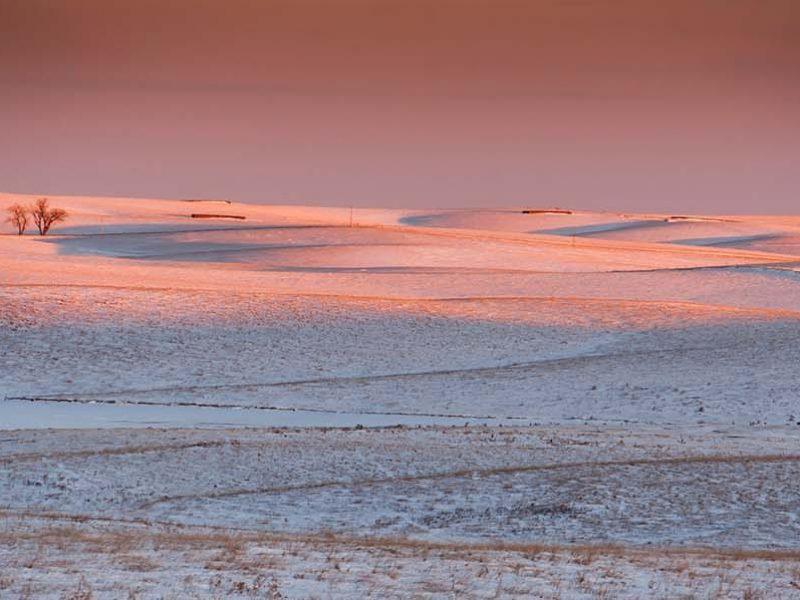 Snow Prairie Framed Mini Canvas Print