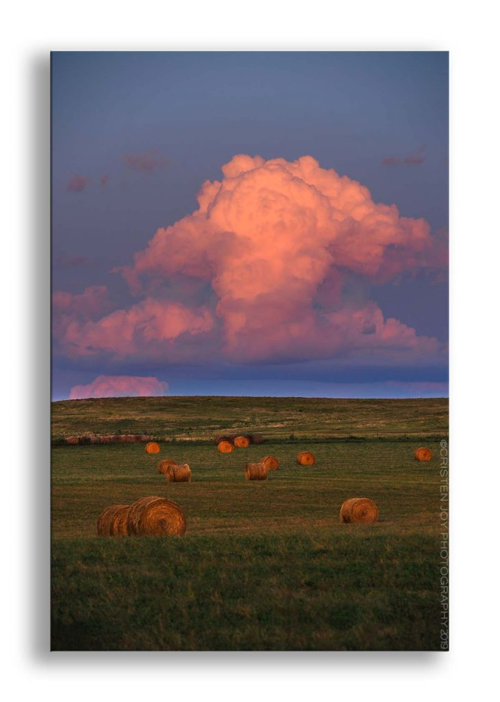 Hay bales scattered throughout a green field. Behind the bales is a tall thunderhead splashed in pink and orange hues from the reflection of the setting sun.
