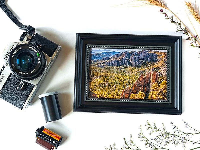 Black Hills Framed Mini Canvas Print