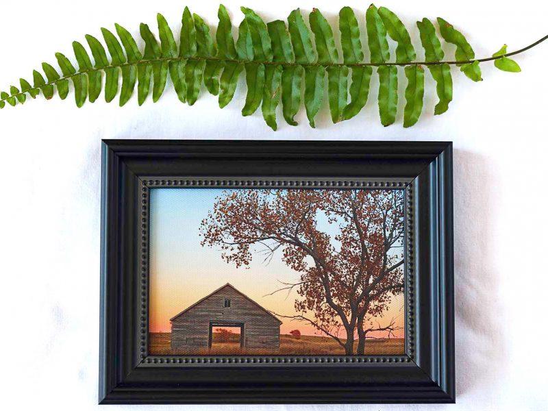 Granary in Fall Framed Mini Canvas Print