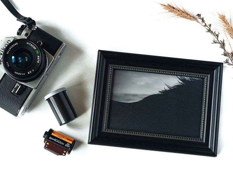 Shadow's Silhouette Framed Mini Canvas Print