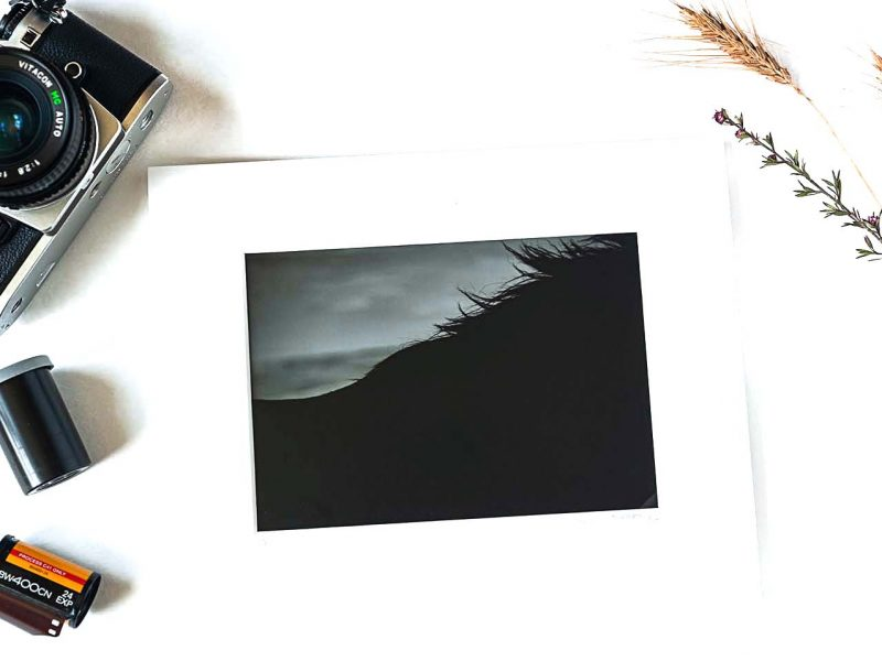 Shadow's Silhouette 5×7 Matted Print