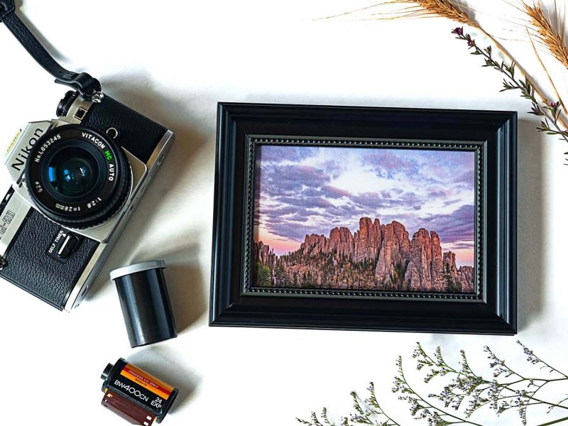 The Cathedral Framed Mini Canvas Print