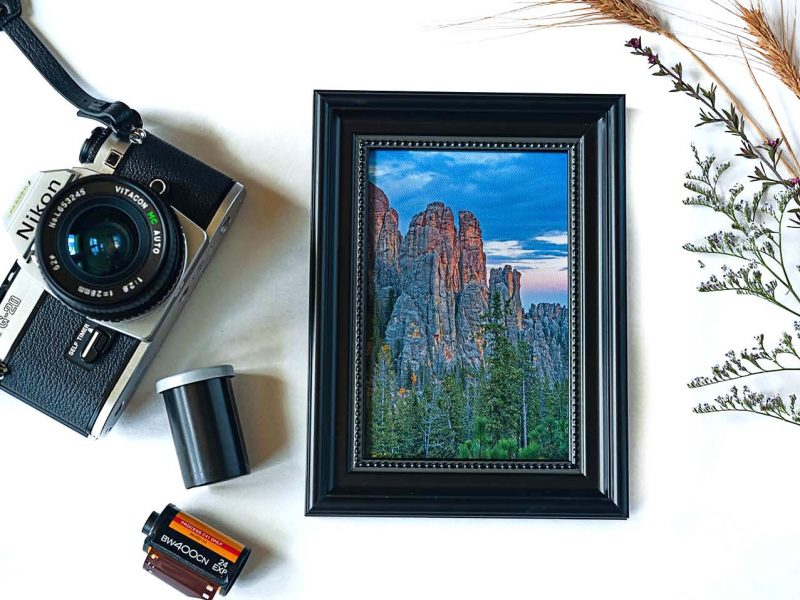 Touch of Gold Framed Mini Canvas Print