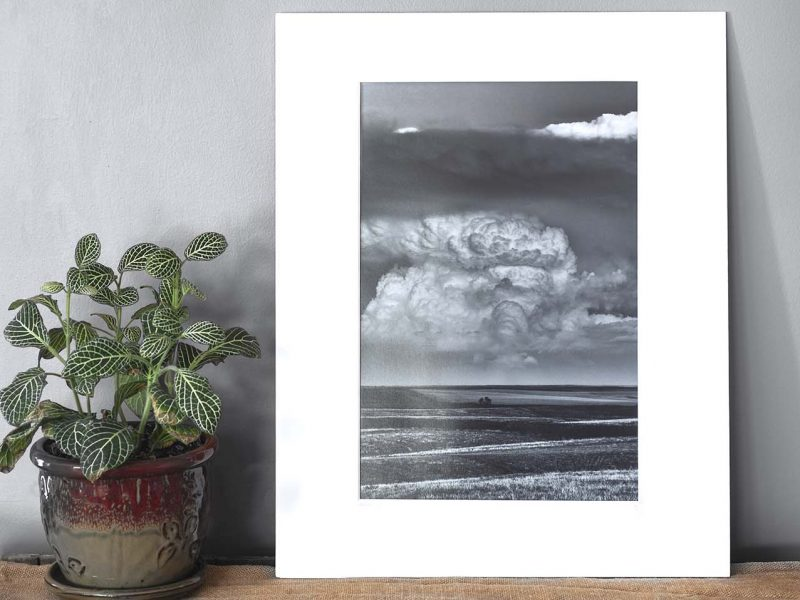 Brewing 10×15 Matted Print