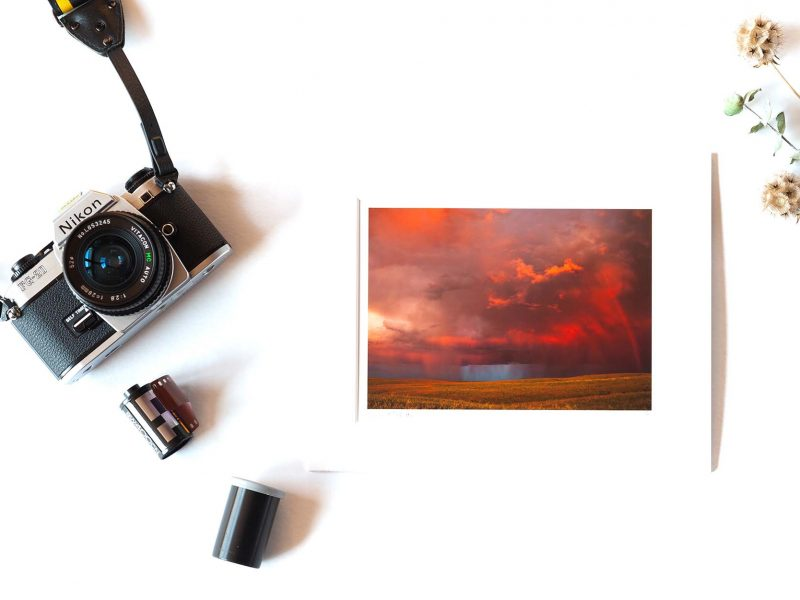 Calling Out 5×7 Matted Print