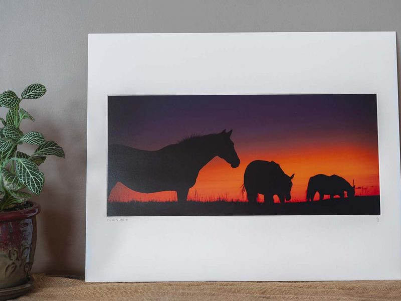 Into the Sunset 8×17.5 Matted Print