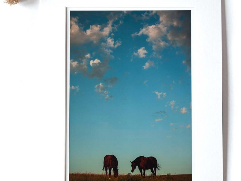 Easy Breezy Day 8×12 Matted Print