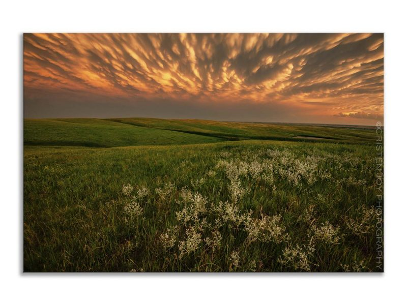 Green Pastures 5×7 Matted Print