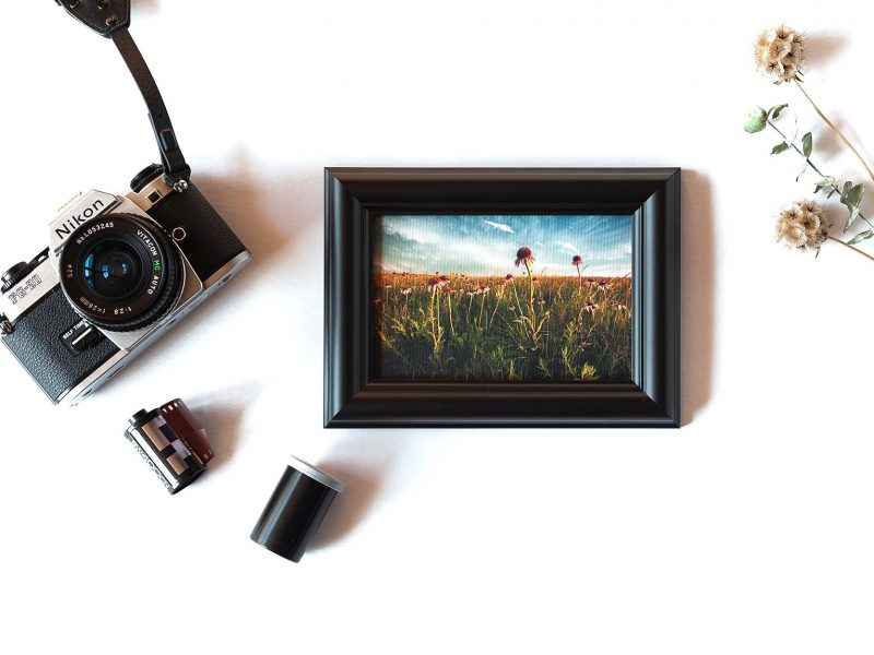 Rejoicing Framed Mini Canvas Print