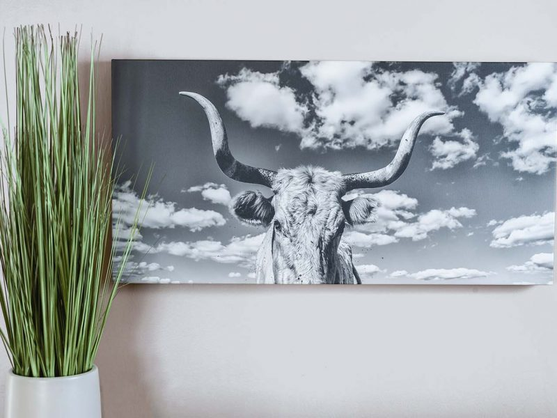 Stella 12×24 Giclee Canvas Gallery Wrap
