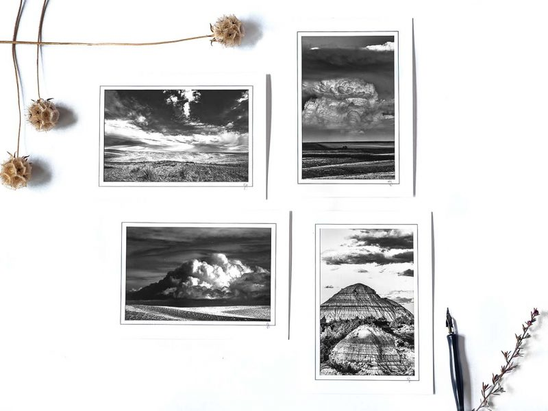 B&W Notecard Collection