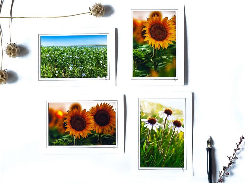 Brightened Day Notecard Collection