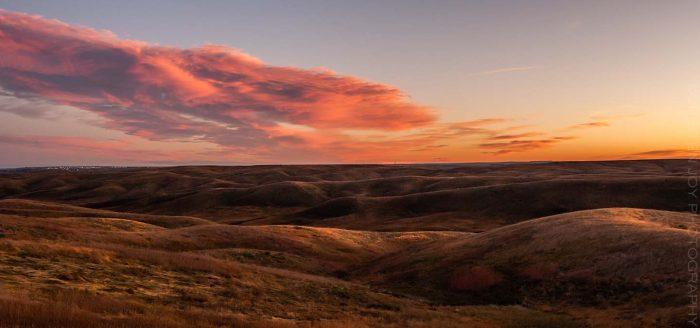 Waking Up  © Cristen J. Roghair http://cristenjoyphotography.com