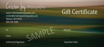Gift Certificate 2017 copy wv