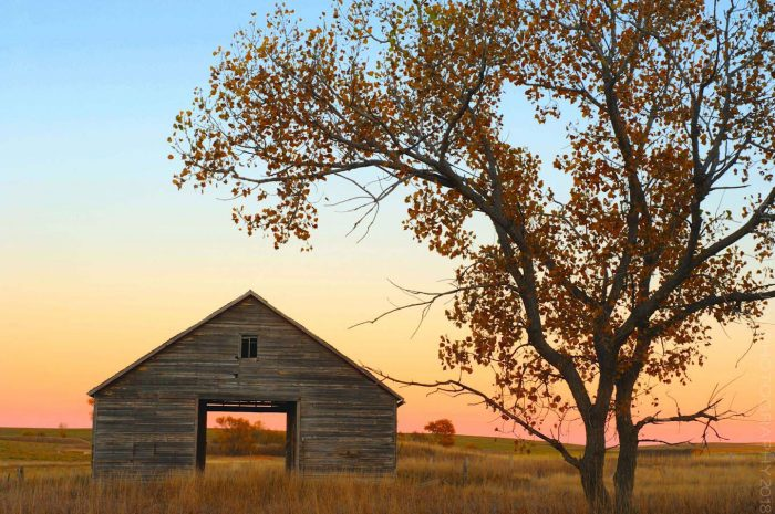 Granary in Fall © Cristen J. Roghair http://cristenjoyphotography.com