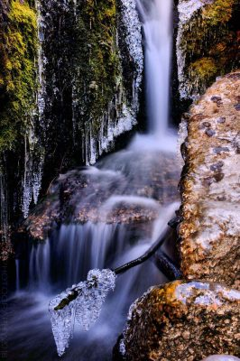 Mountain Gems at Willow Creek Falls © Cristen J. Roghair http://cristenjoyphotography.com