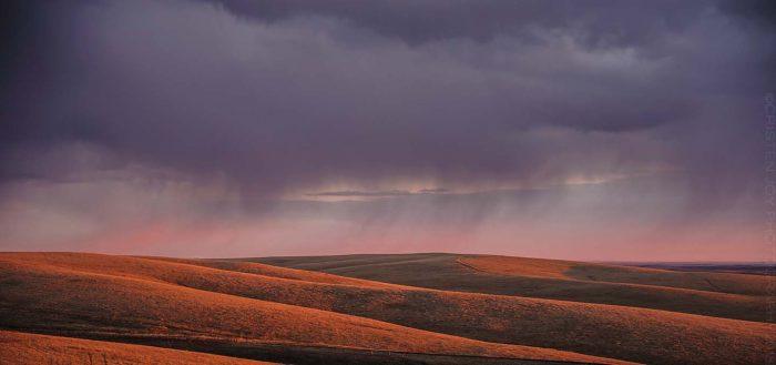 Purple Storm © Cristen J. Roghair http://cristenjoyphotography.com